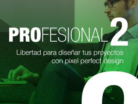 curso-wordpress-madrid-profesional-2