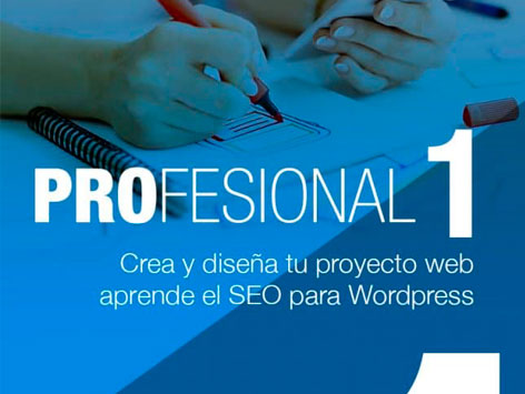 Curso wordpress profesional online